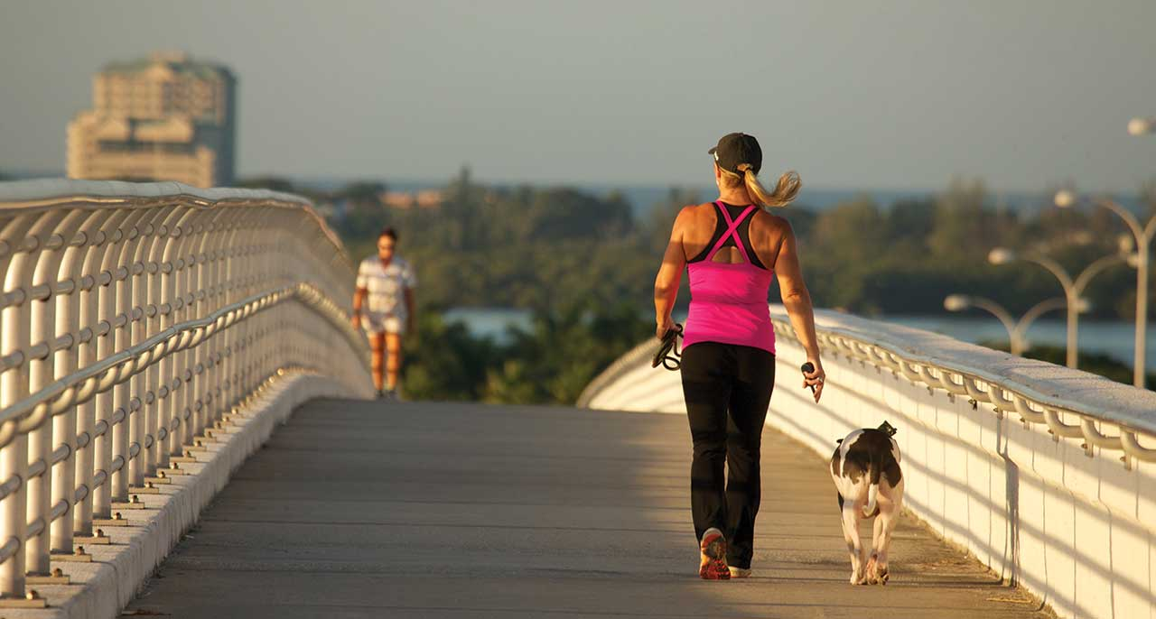woman walking her dog on the sarasota bridge